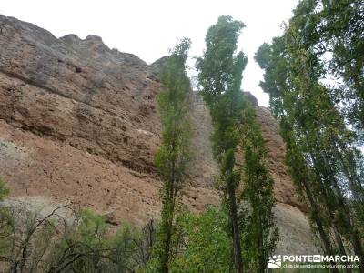 Hoces Río Duratón - Villa Sepúlveda; senderismo nivel alto hiking free